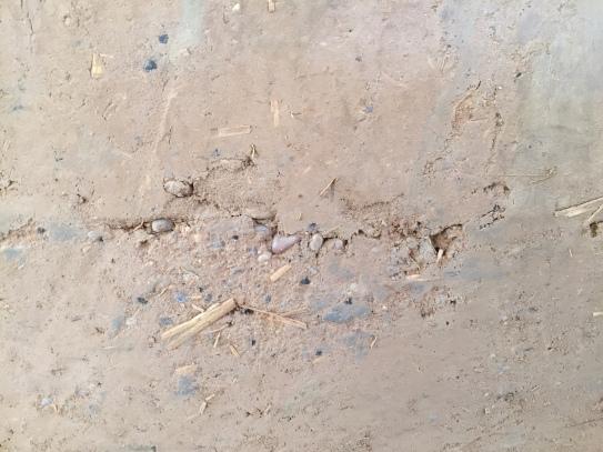 [frauenbaustelle] Lehm macro 6